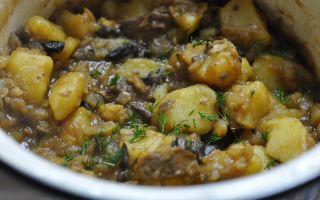 Как приготовить картошку с грибами в казане: рецепты грибов с тушеной и жареной картошкой