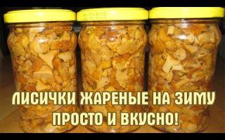 Как консервировать лисички на зиму: рецепты консервированных грибов, как готовить вкусные закуски