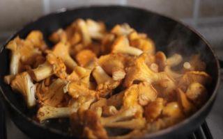 Грибы лисички с картофелем: фото и рецепты приготовления в духовке, мультиварке и на сковороде