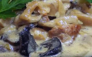Свинина с шампиньонами в духовке, мультиварке, на сковороде: фото, рецепты вкусных блюд
