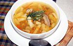 Классические грибные супы из белых грибов: рецепты вкусных первых блюд