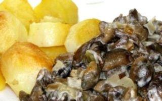 Рецепты приготовления жареных опят: фото, видео, как правильно приготовить грибы на сковороде и в мультиварке