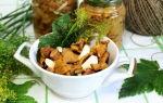 Лисички, соленые на зиму: фото и рецепты быстрого приготовления грибов холодным и горячим способом