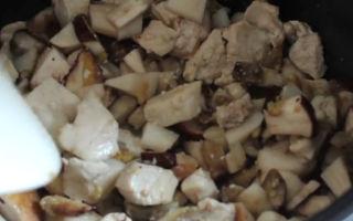 Как приготовить белые грибы в сливочном соусе: рецепты вкусных блюд из боровиков