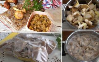 Как хранить грибы маслята на зиму в холодильнике и морозилке, сроки хранения маслят