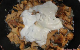 Лисички, жареные со сметаной: фото и рецепты, как приготовить грибы в домашних условиях
