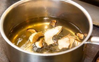 Бульон из сухих и свежих белых грибов: рецепты для приготовления в домашних условиях