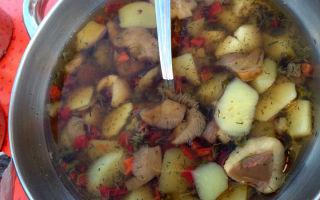 Как сварить грибницу из маслят: сколько варить суп в мультиварке и кастрюле