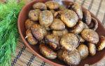 Грибы, запеченные в духовке: рецепты и фото, как правильно запечь грибы и сделать запеканку
