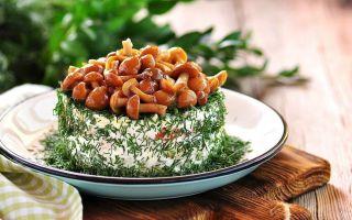 Вкусные салаты с маринованными грибами опятами: фото, простые рецепты приготовления грибных закусок