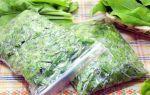 Щавель без соли в банках на зиму — 8 рецептов заготовок с пошаговыми фото