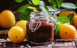 Варенье из алычи с косточками с лимоном на зиму — рецепт с пошаговыми фото