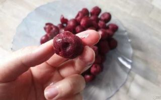 Вишня в сиропе с косточками на зиму — 17 рецептов без стерилизации с пошаговыми фото
