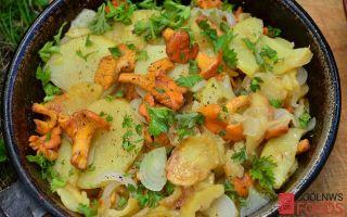 Цветная капуста с шампиньонами: фото, рецепты супов, блюда в духовке, мультиварке и на сковороде