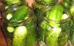 Огурцы без уксуса под капроновые крышки на зиму — рецепт с пошаговыми фото