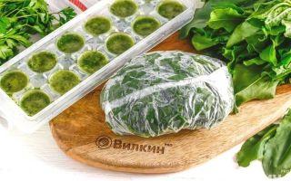 Щавель в морозилке на зиму — рецепт приготовления с пошаговыми фото