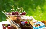 Джем из черешни без косточек на зиму — 12 рецептов густого джема с пошаговыми фото