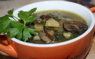 Как сварить грибной суп из груздей: рецепт с фото, блюда с маринованными и солеными грибами