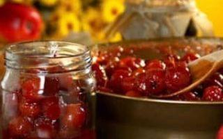 Протертый крыжовник с сахаром и лимоном без варки на зиму — простой рецепт от автора пошагово