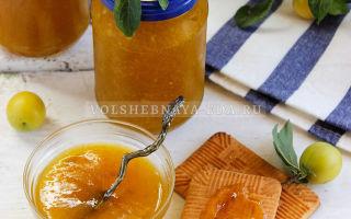 Желе из желтой алычи на зиму — рецепт с пошаговыми фото