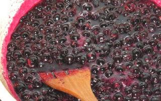 Черная смородина, протертая с сахаром без варки на зиму — простой пошаговый рецепт