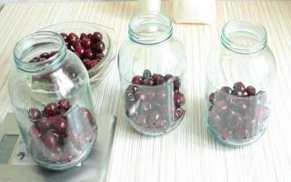 Компот из черешни на зиму — 24 рецепта простых и вкусных с пошаговыми фото