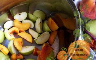 Яблочный сок через соковыжималку без стерилизации на зиму — простой пошаговый рецепт