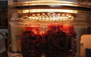 Черника в собственном соку без варки на зиму — рецепт с пошаговыми фото