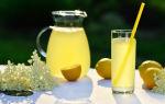 Березовый сок с лимонной кислотой на зиму — 15 рецептов в домашних условиях с пошаговыми фото