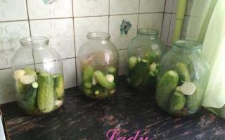 Ассорти огурцы и помидоры на зиму в 3 литровых банках — вкусный рецепт с пошаговыми фото