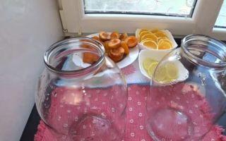 Абрикосовый компот с апельсином и лимоном на 3-литровую банку на зиму — рецепт с пошаговыми фото