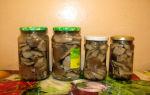 Ложные лесные грибы вешенки: фото, как выглядят ложные вешенки, как их отличить от съедобных