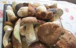 Способы и рецепты хранения белых грибов в домашних условиях в морозилке и квартире