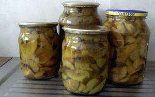 Маринованные серые рядовки: рецепты, как мариновать грибы