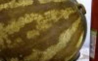 Арбузы в бочке целиком на зиму — пошаговый рецепт с фото