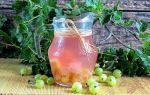 Компот из малины и крыжовника на 3-литровую банку на зиму — простой пошаговый рецепт