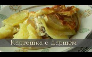 Как приготовить картошку с фаршем и грибами: рецепты для духовки и мультиварки, готовки на сковороде