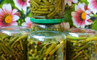 Салат из стрелок чеснока на зиму — рецепт с пошаговыми фото