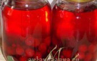Компот из вишни и смородины на зиму — 9 рецептов в банках с пошаговыми фото