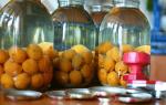 Компот из абрикосов на зиму — 59 простых рецептов с пошаговыми фото