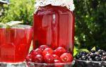 Компот из земляники и красной смородины на зиму — рецепт с пошаговыми фото