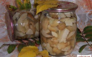 Маринование грибов в домашних условиях: фото и рецепты, как мариновать грибы