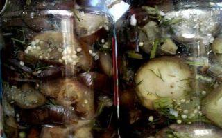 Баклажаны на зиму фаршированные — рецепт приготовления с пошаговыми фото