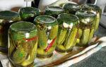 Огурцы на 1.5 литровую банку на зиму — 39 рецептов хрустящих огурцов в банках