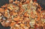 Рыжики в духовке: рецепты, как приготовить запеченные грибы с картошкой и сметаной