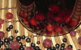 Компот из черной смородины без стерилизации на 3-литровую банку на зиму — простой рецепт от автора