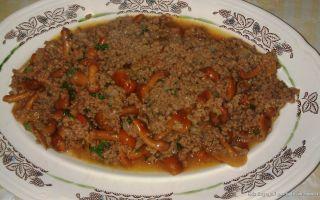 Фарш из опят на зиму и грибные блюда для одноразовой трапезы