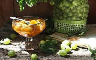 Крыжовник с лимоном на зиму — 9 рецептов простых и вкусных с пошаговыми фото