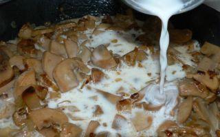 Рецепты грибных соусов из сушеных белых грибов со сметаной, маслом и сливками