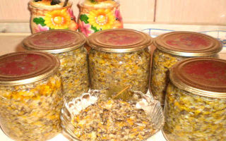 Рецепты грибной икры из белых и черных груздей на зиму: как приготовить закуску из грибов